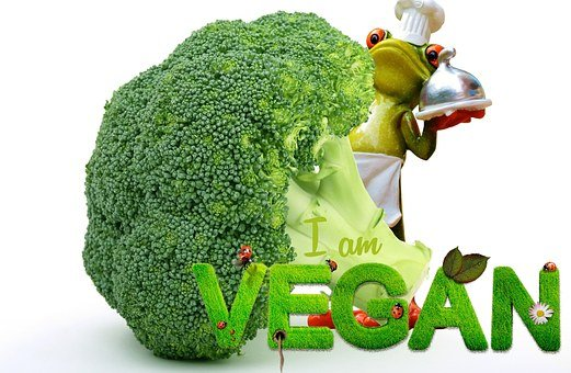 Vegan, Appetite, Broccoli, Frog, Cooking, Funny, Cute