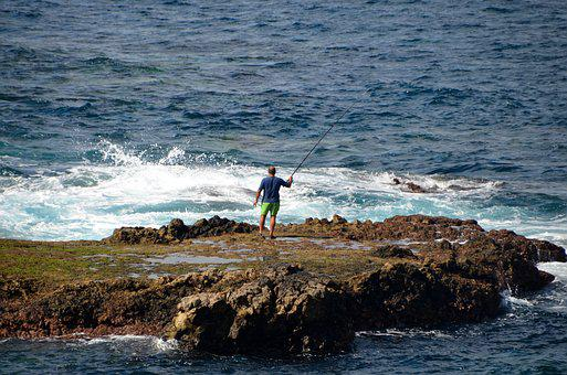 Atlantic, Angler, Sea, Fish, Holiday, Coast, Rock, Wave