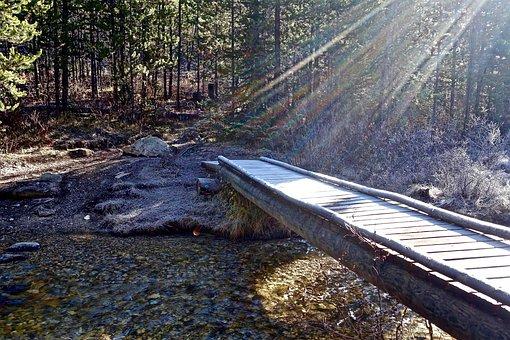 Sun Rays, Light, Bridge, Focus