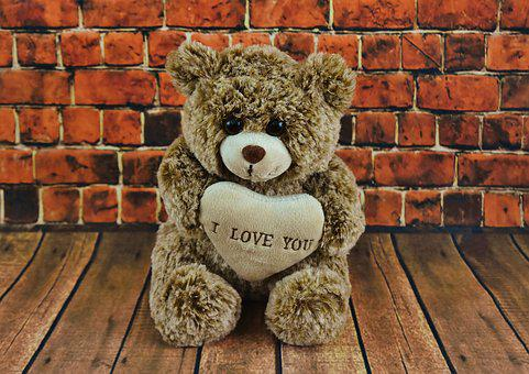 Teddy, Valentine's Day, Love, Forever, Cute, Bear