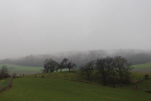 Rain, Landscape, Nature, Clouds, Mood, Storm, Fog