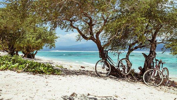 Bike, Beach, Bali, Trees, Sand, Bicycles, Turquoise