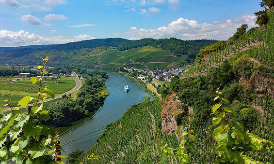 ürzig, Mosel, Sachsen, Germany, Wine, Vineyards