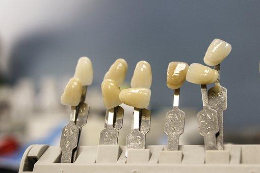 Tooth, Dentist, Dental, Health, Care, Medicine, Hygiene