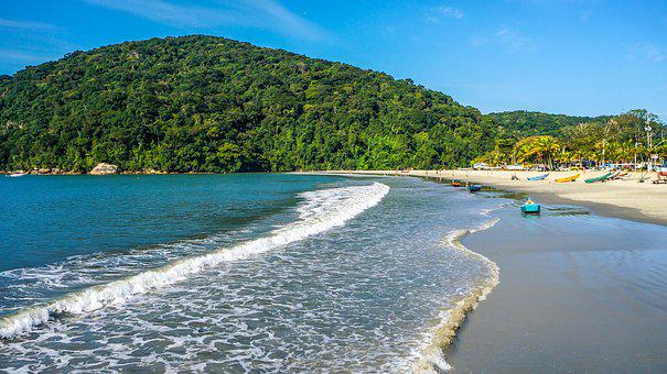 Mar, Forest, Mato, Green, Sky, Blue, Rocks, Island