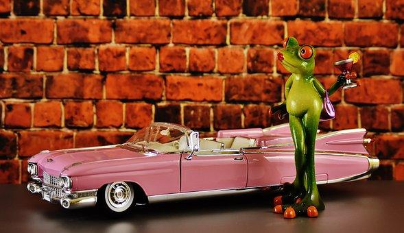 Cadillac, El Dorado, Frog, Chick, Arrogance, Cocktail