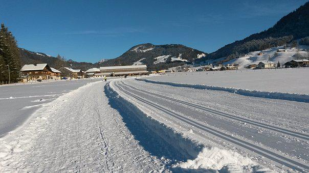 Wintry, Trail, Cross Country Skiing, Trace