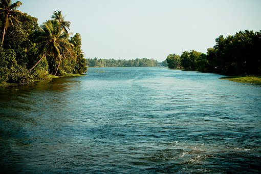 Backwaters, India, Kerala, Water, Palm, Houseboat, Boot