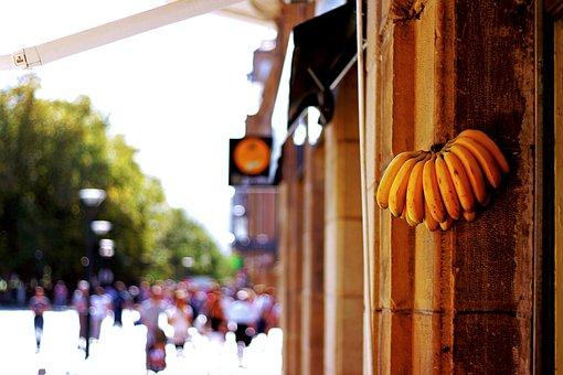 Banana, Fruit, Yellow, Fruits, Banana Shrub