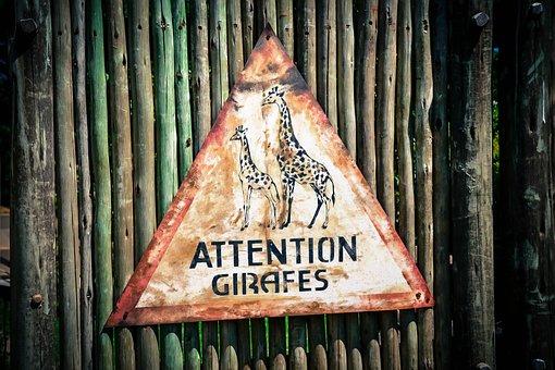 Signs, Brand, Ban, Animal, Zoo, Zlin, Rust, Rusty