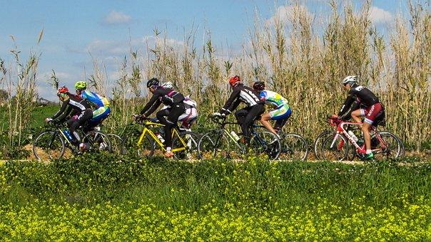 Cycling, Sport, Bicycle, Bike, Cyclist, Biking, Fitness