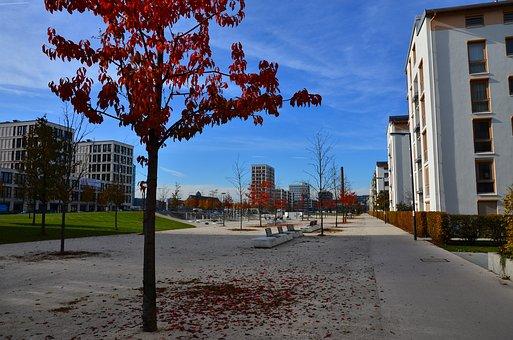 Contrast, Autumn, City, Concrete, Leaves, Fall Foliage