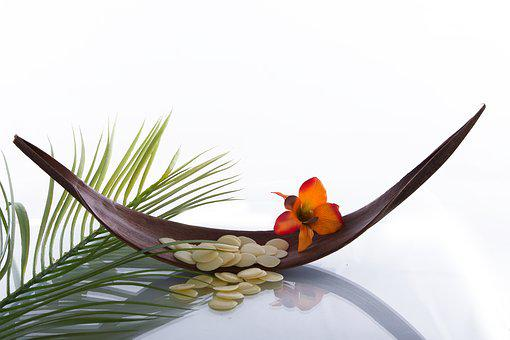 Wellness, Blossom, Bloom, Relaxation, Massage, Recovery
