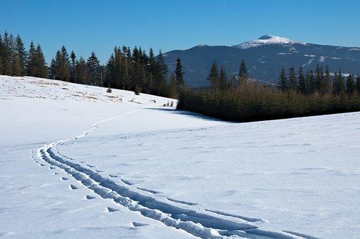 Babia Top, Winter, Trail, Skitury, Skiing, Traces, Way
