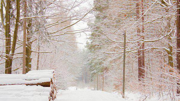 Snow, Landscape, Away, Winter, Rest, Wintry, Nature