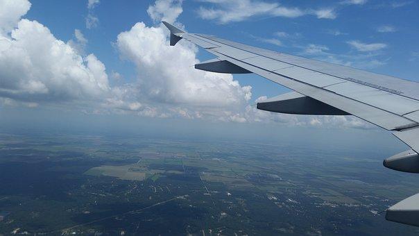 Airplane, Airplane Seat, Flight, Passenger