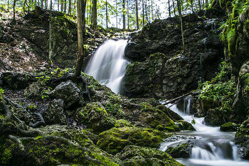 Forest, Waterfall, Schliersee, Nature, Landscape