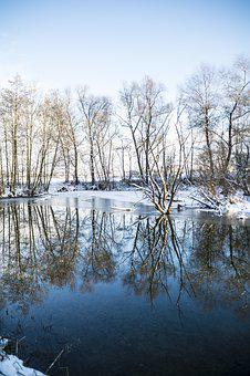 Winter, Mirroring, Trees, Water, Snow, Nature, Pond