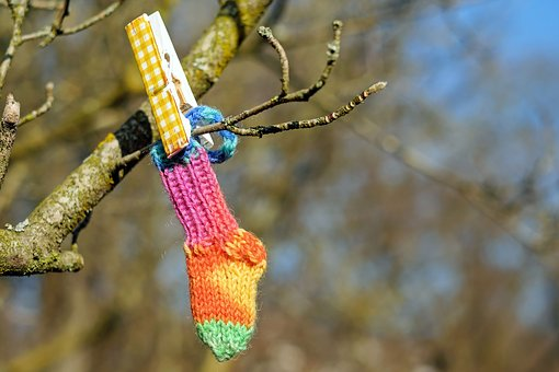 Sock, Colorful, Knitted, Hand Labor, Hangs, Branch