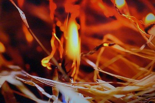 Fire, Red, Ho, Hot, Danger, Burn, Energy, Yellow, Warm