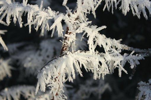 Winter, Eiskristalle, Frozen, Cold, Ice, Impression