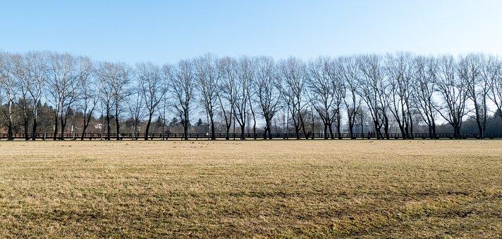Feuchtauen, Recreational Area, Fürth, Nature, Bavaria
