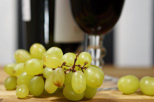Wine, Grapes, Winegrowing, Fruit, Vine, Red Wine, Red