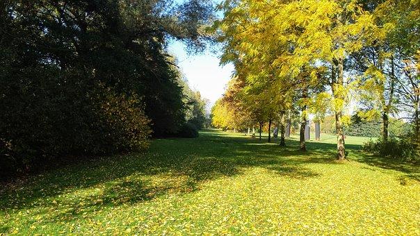 Grass, Garden, Bloom, Belgium, Trees, Shrubs