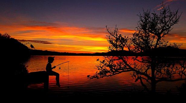 Child, Boy, Fish, Lake, Waters, Fishing Pond, Angel