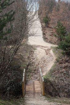 Away, Bridge, Nature, Web, Wood, Pedestrian Bridge