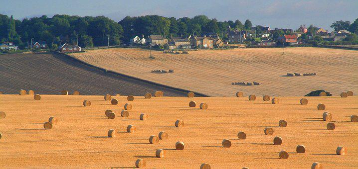 Harvest, Bales, Straw, Emley, Flockton, Rural, Farming