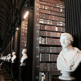 Library, Library Books, Bookshelf, Book, Read
