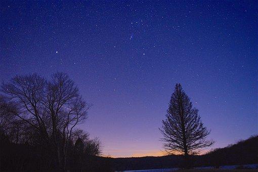 Night, Stars, Sky, Trees, Silhouette, Space, Dark