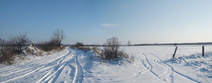 Snow, Way, Winter, Landscape, Spacer, Snowy