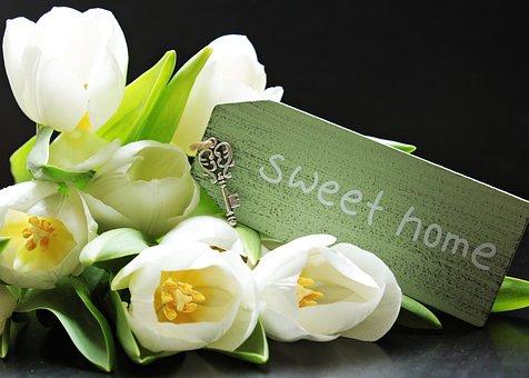 Tulips, Tulipa, Shield, Sweet Home, Key, Keychain