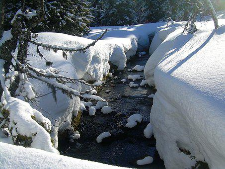 Winter, Snow, Nature, Brook, Snow Landscape, Cold