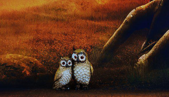 Owls, Pair, Forest, Cute, Figures, Nocturnal
