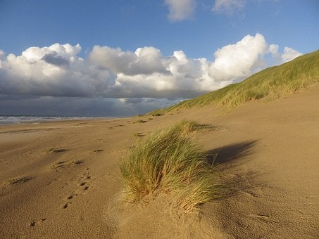 Sea, Summer, Holiday, Beach, Dunes, North Sea