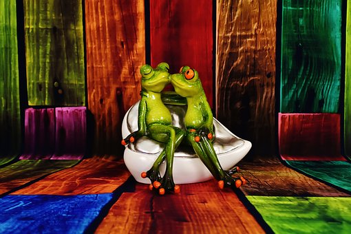Lovers, Frogs, Funny, Pair, Love, Cute, Frog
