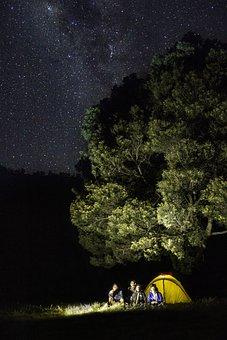 Sky, Stars, Bromo, Mountain, Tree, Savanna, Galaxy