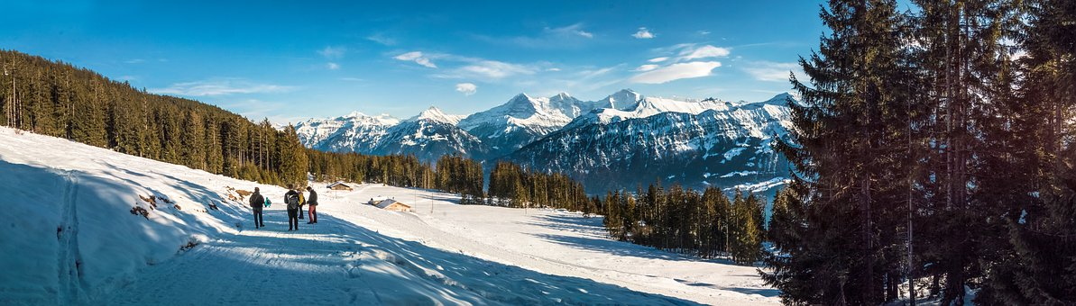 Panorama, Winter, Mountains, Forest, Snow, Switzerland