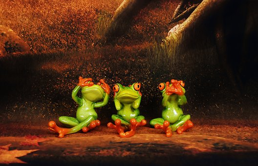 Not See, Not Hear, Do Not Speak, Frogs, Figures, Funny