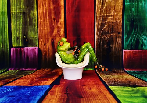 Frog, Chair, Tablet, Relaxation, Furniture Pieces, Cute