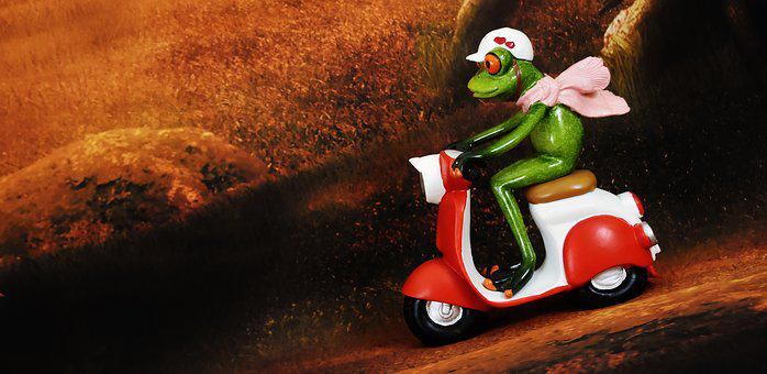 Frog, Vespa, Figure, Roller, Vehicle, Locomotion