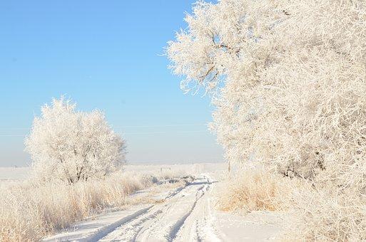 Driveway, Road, Hoarfrost, Winter, White, Blue
