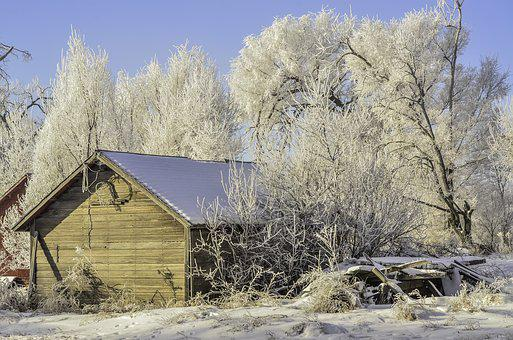 Winter, Old Shed, Hoarfrost, Snow, Rural, Shed, Nature