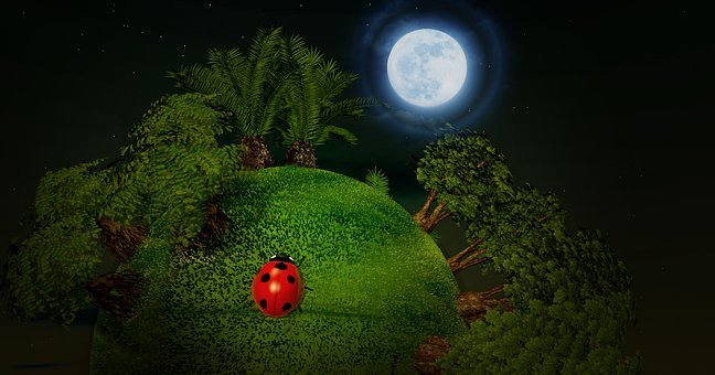 Smallworld, Small Planet, Planet, Ball, Trees, Beetle