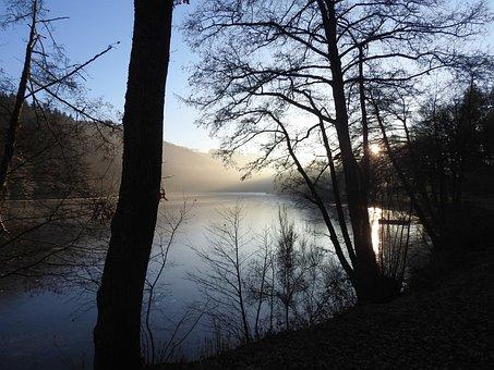Nature, Landscape, Lake, Landscapes, Of Course, Forest