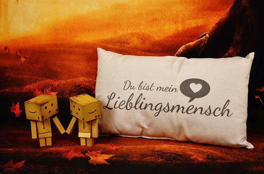 Love, Danbo, Favorite Human, Pillow, Valentine's Day