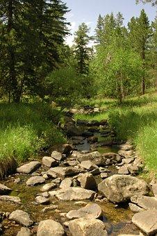 Stream, Brook, Mountains, Summer, Green, Trees, Water
